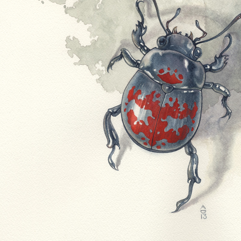 Cynosure, Wayne Alan Brenner, Minerva's Wreck, Abi Daniel, AbiDaniel, Hoarsefly, Watercolor, beetle, rorschach, ink blot